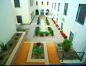 courtyard design by lotus designs landscaping